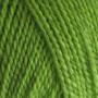 BC Garn Semilla Unicolor ob112 Äppelgrön